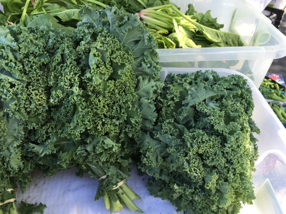 Back Acres Kale